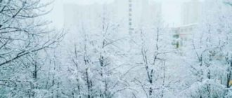 Наступила зима – сочинение