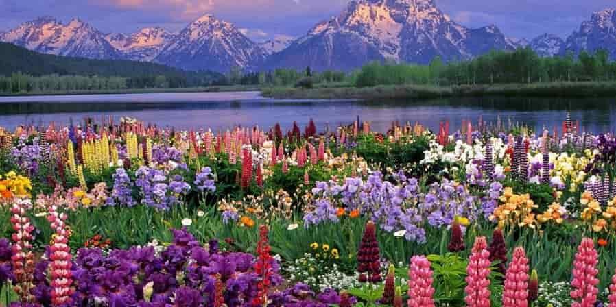 Сочинение-описание природы весной