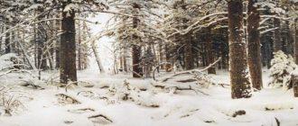 Шишкина «Зима»